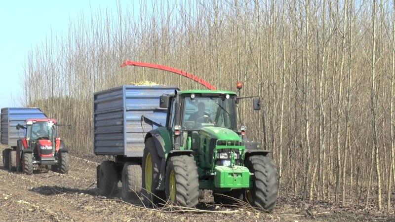 сборка быстрорастущих плантаций Навесной измельчитель урожай щепа Schradenholz UG Germany