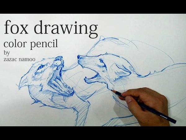 여우드로잉 ,FOX DRAWING,동물드로잉,색연필드로잉,연필드로잉-Pencil drawing