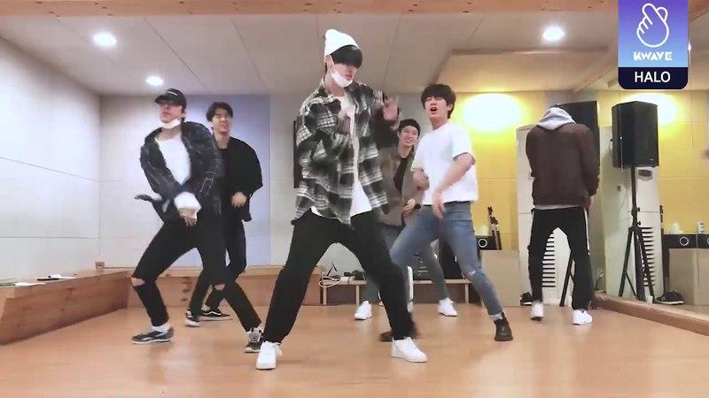 헤일로(HALO) KWAVE 2배속 '댄스편'