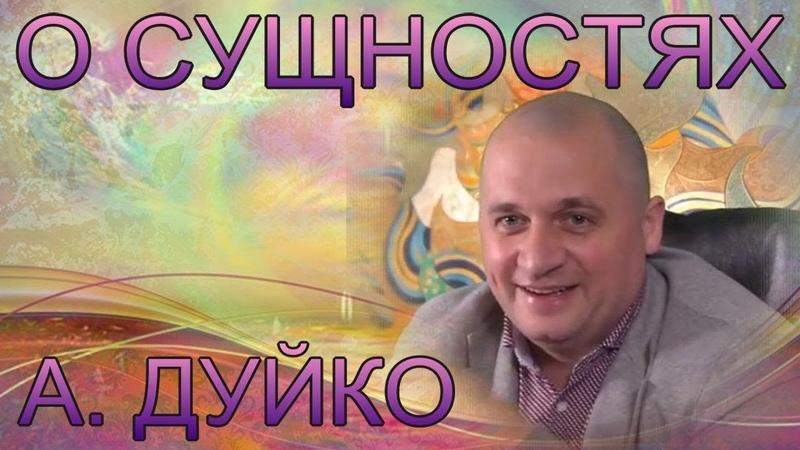 О сущностях! Андрей Дуйко школа Кайлас