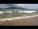 Волна, новая волна