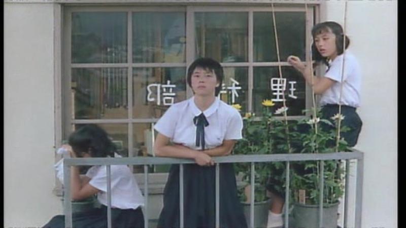 Taifû kurabu (Shinji Sômai, 1985)