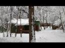 Прогулка по Биостанции МГУ в Звенигороде