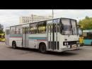 Обзор городского автобуса Икарус 260 город Тольятти