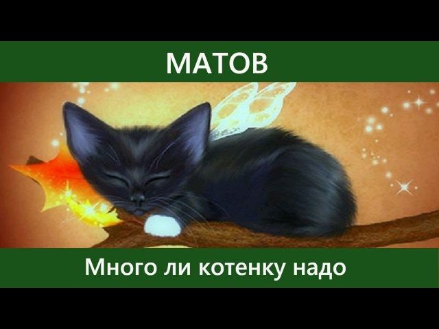 Алексей Матов - Много ли котенку надо