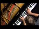 Boris Berezovsky piano wire broke with franz liszt