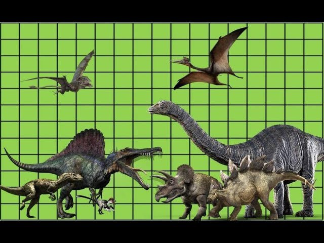 Size comparison of dinosaurs - Triassic, Jurassic and Cretaceous