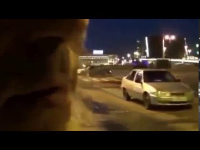 Игорь Гусев. Подмена 5000 славянских слов еврейскими в Библии