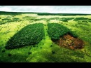 Экологи побледнели,когда увидели это на фотографии.Природа еще дышитТайны Чапман