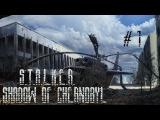 Прохождение от подписчика S T A L K E R Тень Чернобыля #1