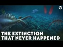 The Extinction That Never Happened