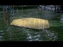MARIN Floating Island - Model installation and testing PROMO