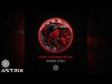 Astrix &amp Freedom Fighters - Burning Stones