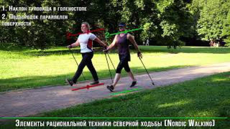 Nordic Walking. Техника ходьбы с палками.