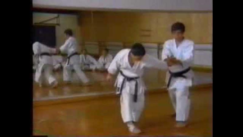 Hirokazu Kanazawa Kumite 金澤弘和宗家 組手