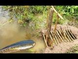 НАШИ РУССКИЕ ДЕДЫ ЛОВИЛИ НА ЭТОТ СПОСОБ ЧАСТЕНЬКО ! Вот это рыбалка Ты не поверишь 2018 зрелище не для слабонервных Реакция рыбы на сало РЫБАК НАКАЗАЛ СОМОВ ЗА ОБЖОРСТВО, СОМЫ АТАКОВАЛИ ГНЕЗДО С МЯСОМ живца ГЛУПЫЕ СОМЫ ЕЛЕ ВЛЕЗЛИ В ЛУНКУ Песец продолж