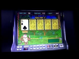 Тактика игры для новичков в казино Вулкан - Как новичку обыграть Crazy Monkey-С чего начать в казино (1)