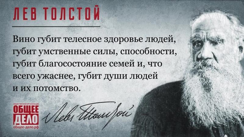 Лев Толстой Ролик Общего дела для светодиодного щита.