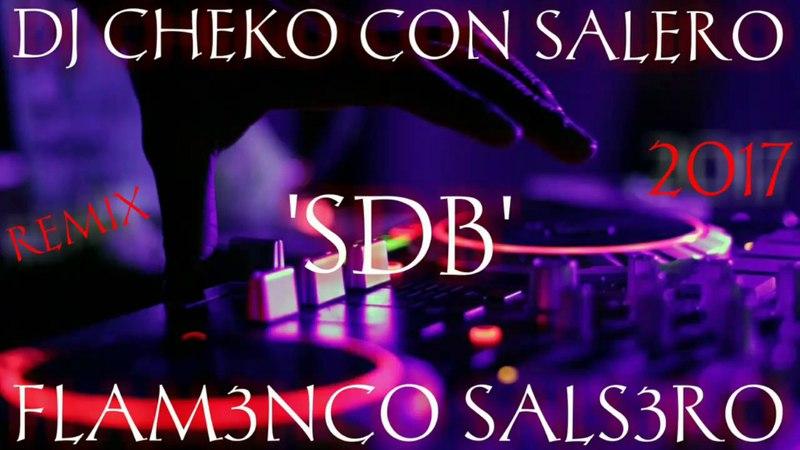 FLAMENCO SALSERO 2017 SDB SALSA FRESH REMIX DJ CHEKO CON SALERO