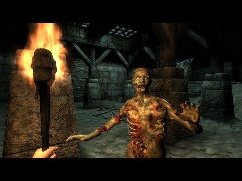 The Elder Scrolls IV: Oblivion Приключения в Скинграде.