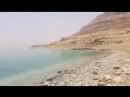 Бразильские нудисты на Мёртвом море