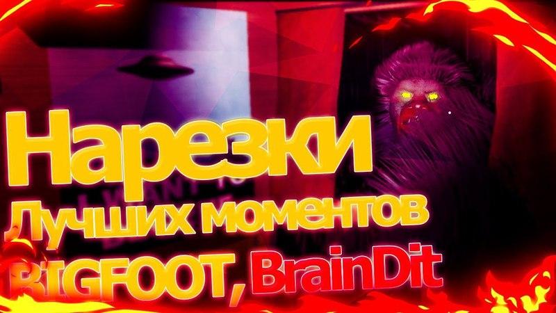 Нарезки лучших моментов, игра BIGFOOT: TheBrainDit, Дядя Женя, AlexPozitiv.