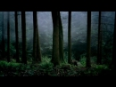 Медвежий поцелуй (реж. Сергей Бодров ст., 2002)