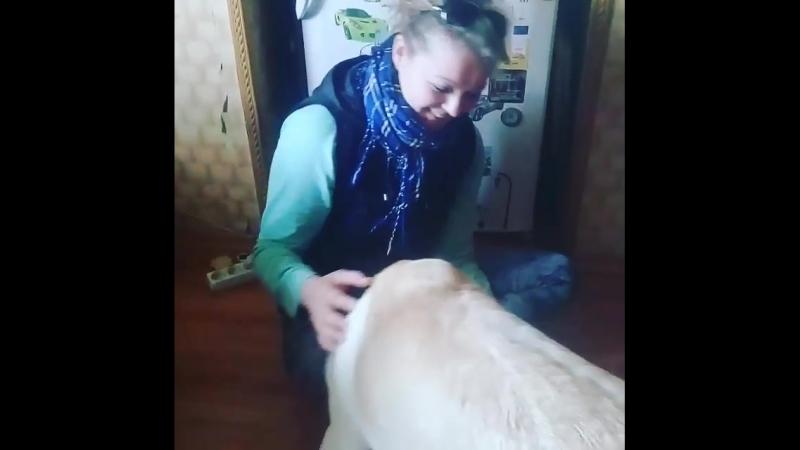 клевый Олимпик))