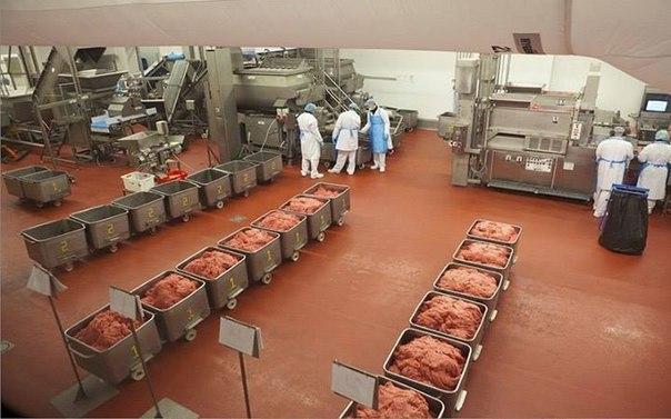 Бизнес-идея: производство котлет  В настоящее время рынок пищевых по