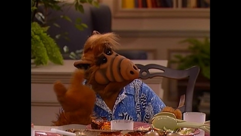 Alf Quote Season 3 Episode 1_Альф