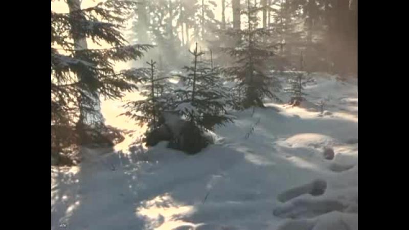 А снег идёт Из фильма Карьера Димы Горина Поёт Майя Кристалинская cut