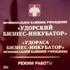 """МКУ """"Удорский бизнес-инкубатор"""""""