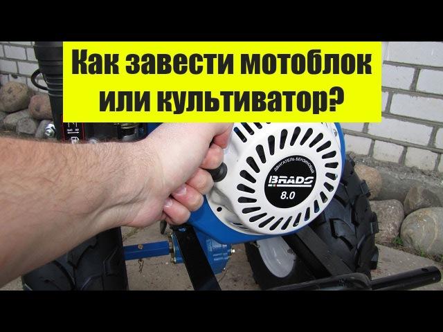 Brado BD-850. Как завести мотоблок или мотокультиватор?