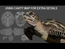 Using Cavity Map for extra details on Carey Turtle Paint Zbrush 4R8 Part 05