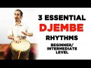 3 Essential Djembe Hand Drum Rhythms for Beginner Intermediate Level Players