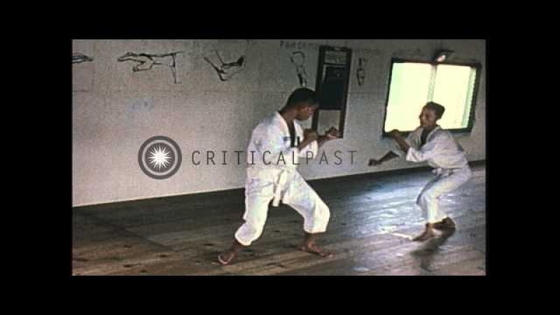 Vietnamese Special Forces trainees learn Tae Kwon Do under the supervision of Kor...HD Stock Footage