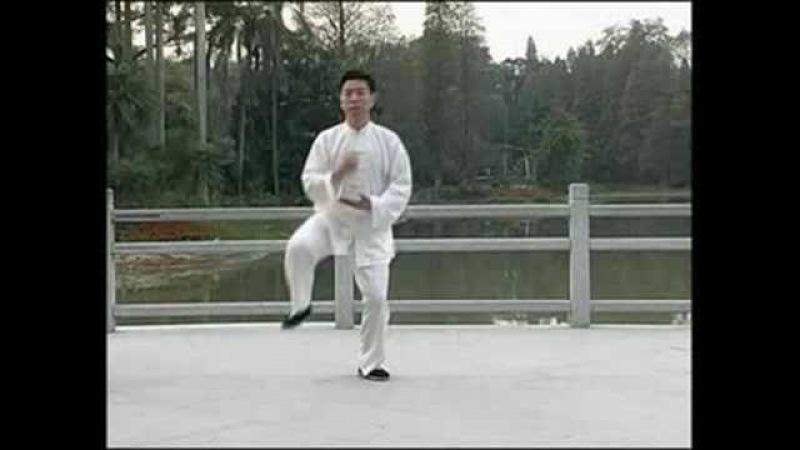 Ван Эрпин Пушечные удары тайцзы стиля Чэнь вторая старая форма 陳式太極拳 老架二路 王二平