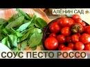 Соус с помидорами на зиму Песто Россо Заготовки