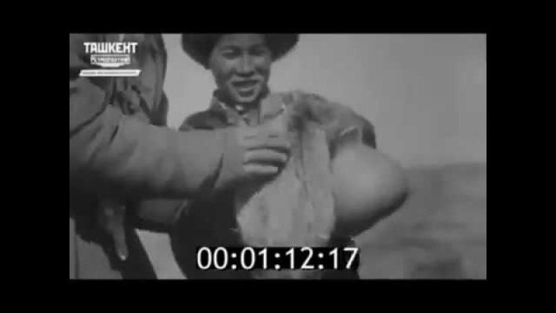 Ловля лисиц в тыкву. Узбекистан, 1930-е годы