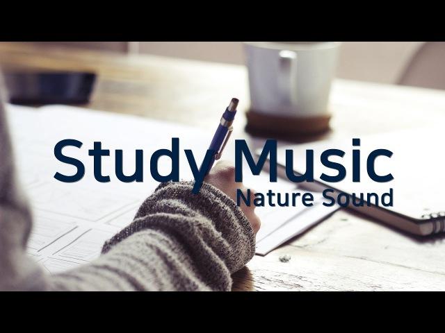 공부할 때 듣는 음악ㅣ차분해지고 집중력 높이는 노래 📚 STUDY MUSIC for Improving Concentration, Focus, Memory