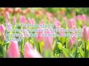Топ 5 Святая круть Лучших,весенних, Христианских, русских нужно сказать, песен про любовь