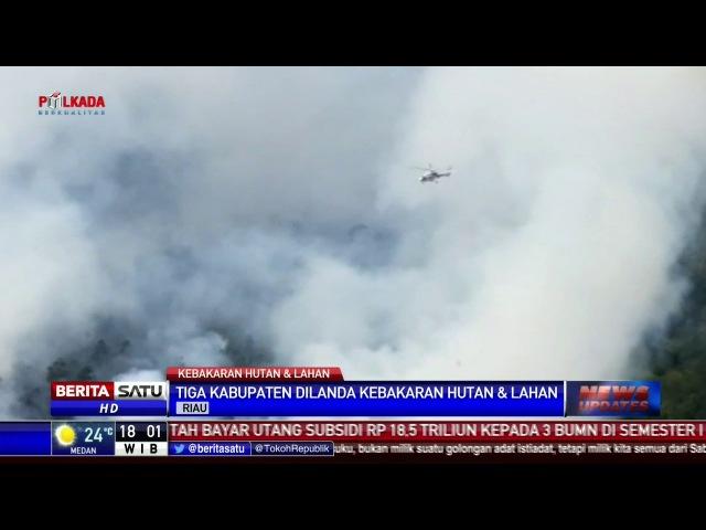 Kebakaran Hutan Landa 3 Kabupaten di Riau