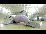 ATTITUDE DANCEHALL SKOOL BCN Y MADRID Cute Bubble Riddim- Choreo by Prima Cali