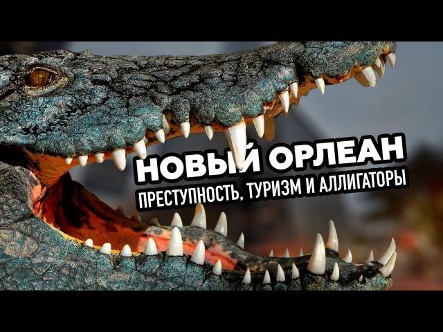 RTД на Русском (Новый Орлеан: преступность, туризм и аллигаторы)