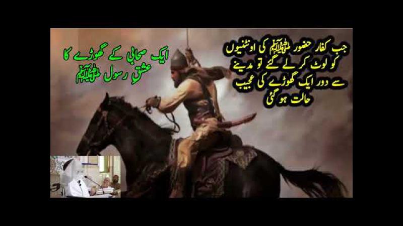 Aik Sahabi ky Ghoray Ka Ishq ایک صحابی کے گھوڑے کا عشق رسولﷺ