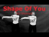 Shape Of You (Ed Sheeran)The Slovak Waakers  choreography dance video