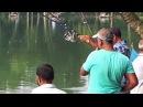 Big Catla Fish Hunting Video By Fish Watching