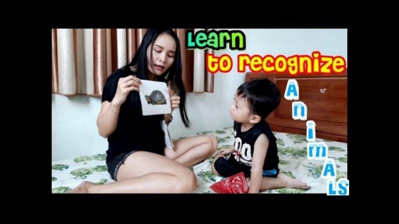 Khánh Thiên chơi Thẻ Học Thông Minh Loại Lớn cùng Mẹ - Thẻ học thông minh - Sky Channel
