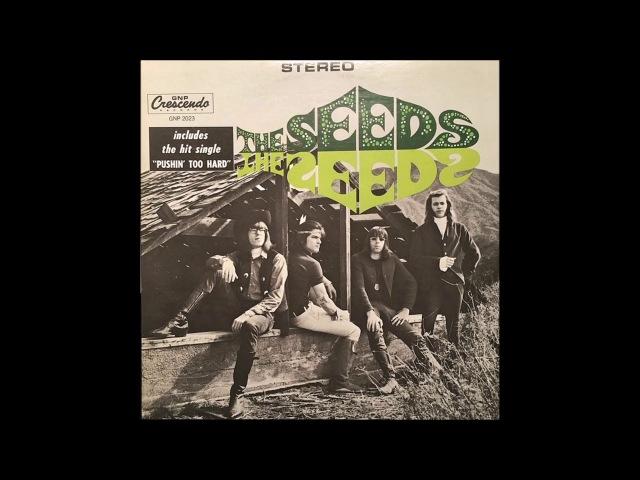 The Seeds - S/T (1966) (US Stereo GNP Crescendo vinyl) (FULL LP)