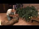 Пума уронила ёлку! Cougar Messi Christmas Tree 2